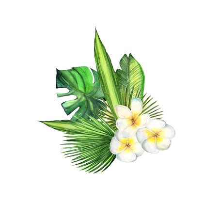 Watercolor tropical plant leaves and exotic plumeria flowers Stock fotó
