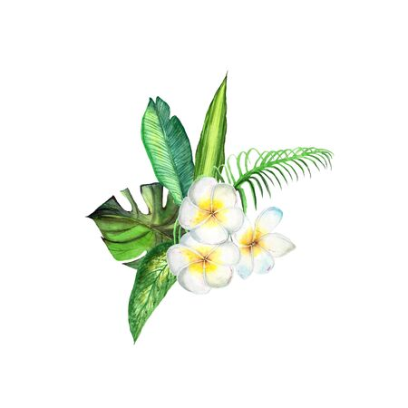 Watercolor plant green leaves and plumeria flowers on white background. Palm leaf, monstera, trees, flowers. Exotic, relax, jungle, greenery, template for greeting card, wedding invitation, cover.