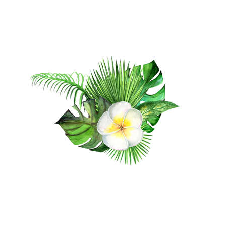Watercolor tropical plant leaves and exotic plumeria flower