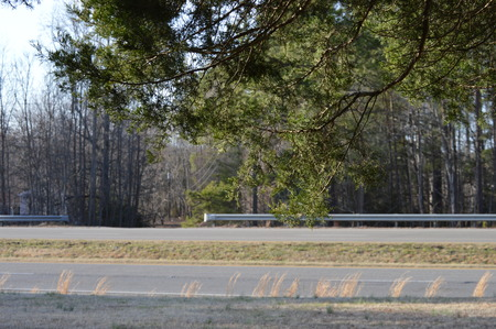 View of US route 360 in rural Virginia, from under a tree.  The far lanes are westbound Reklamní fotografie - 95908248