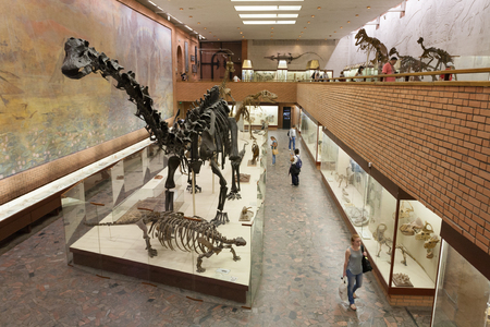 MOSCOW, RUSSIA - AUGUST 20, 2017: Skeletons of dinosaurs at Paleontological Museum. The museum is named after Yuri Orlov (1893-1966).
