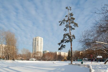 MOSCOW, RUSSIA - JANUARY 09, 2019: Pond covered with snow, trees in Lianozovo park and residential buildings in Cherepovets street on sunny winter day. Cherepovetskaya street is located in North of Moscow.