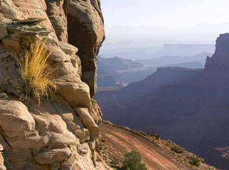 Road and plant both have a tenuous grip on the sheer rock face; Moab, Utah Reklamní fotografie