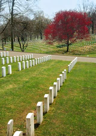 Arlington National Cemetary, where Americas war dead rest Reklamní fotografie