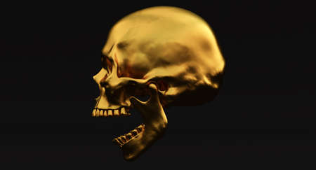 3D Set of Human skulls isolated on blackbackground, 3d render Stockfoto