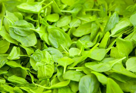 'baby spinach': Bin of Fresh, Green Baby Spinach at a Farmers Market
