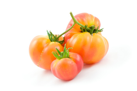 hillbilly: Three Hillbilly, an heirloom variety, Tomatoes isolated on white