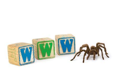 Tarantula with blocks spelling WWW for World Wide Web Stock Photo