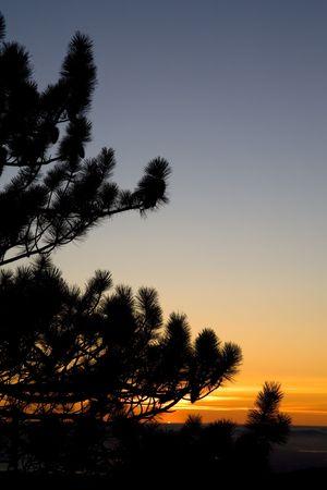 phenomenon: Uncommon Phenomenon, a Green Flash, Caught at Sunset