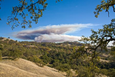 arri�re-pays: Controlled Burn in the Backcountry to Reduce Fire Danger