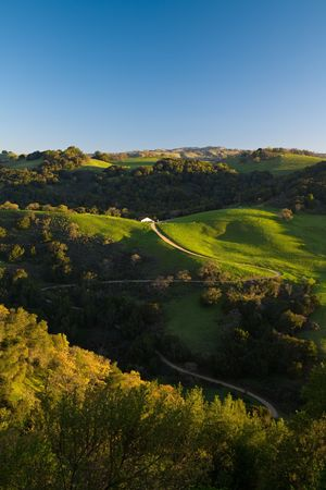 Winding Road on Spring Green Rolling Hills photo