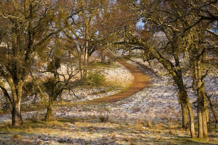 Hiking Trail in Golden Morning Light with Dusting of Snow Stock Photo - 3049850