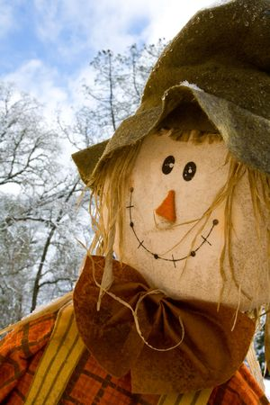 Closeup of Happy Scarecrow Face with Sky and Trees in Background Stock Photo