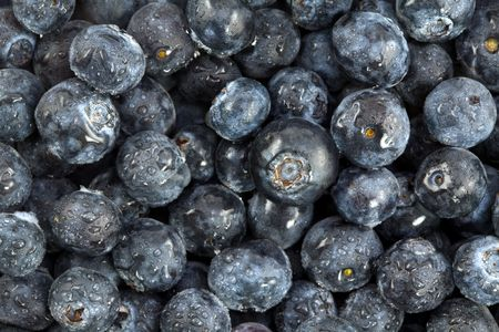 Pile a Fresh and Healthy Blueberries with Dew Stock Photo - 3177219