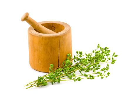 Fresh Oregano with Mortar and Pestle Isolated on White photo