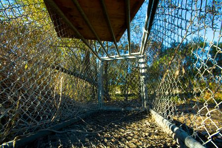 View From Inside a Wild Animal Cage Stock Photo - 3792363