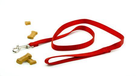 dog on leash: Del perro y Galletas Preparado para un paseo
