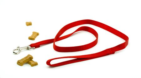 behave: Dog Leash and Biscuits Ready for a Walk