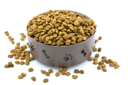 kibble: Dog Bowl Overflowing with Too Much Food