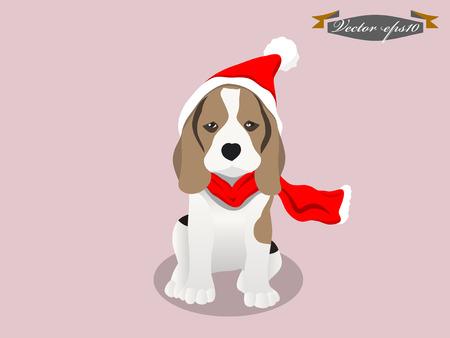 beagle: beagle dog with santa claus suit