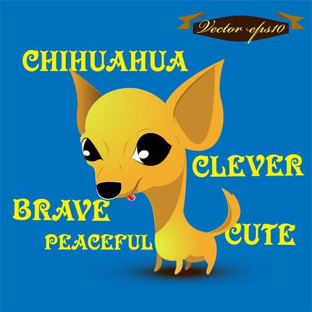 smallest: chihuahua dog cartoon vector Illustration