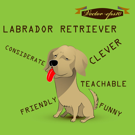 white tail deer: labrador retriever dog cartoon Illustration