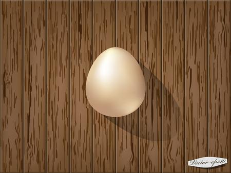rindfleisch roh: rohes Ei auf Holztisch Illustration