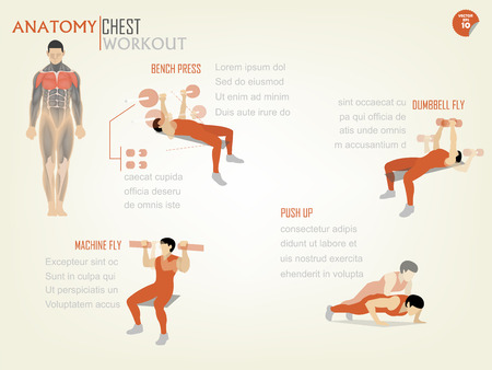 beautiful design infographic of chest workout consist of bench press,dumbbell fly,machine fly and push up Banco de Imagens - 43451608