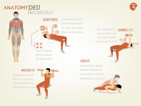mooi ontwerp infographic van de borst workout bestaat uit bankdrukken, halter vliegen, machine vliegen en push up
