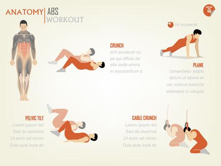 muskeltraining: sch�nes Design Infografik von Bauch ABS Kernk�rpertraining bestehen aus crunch, Brett, Beckenschiefstand und Kabelklemme