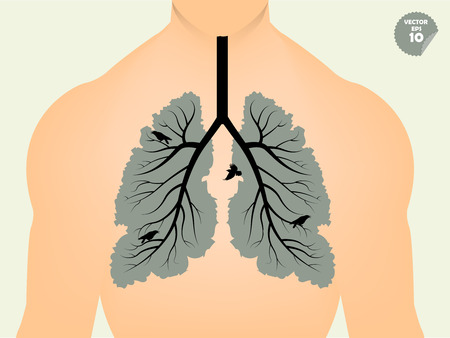 respiratory protection: beautiful graphic design concept of lungs like the branch of tree and leaf,conceptual graphic of human lungs like tree