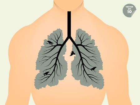 hermoso diseño concepto gráfico de los pulmones como la rama del árbol y de la hoja, gráfico conceptual de los pulmones humanos como árbol