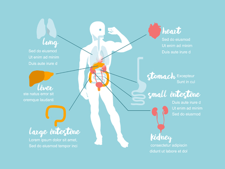 Illustration vector info graphic showing study of human body info graphic design concept. Illustration