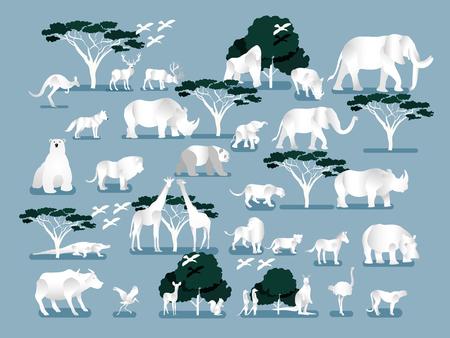 vector de ilustración de selva salvaje, sabana y animales del bosque, aves, concepto de diseño gráfico de la vida salvaje.
