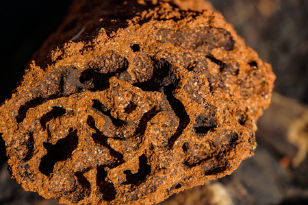 close up of the inside of a Red termite mound, northern territory