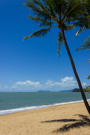 Een prachtig tropisch strand met palmbomen in het noorden van Australië, clifton beach, queensland Stockfoto