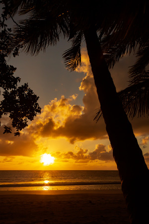 Sunrise at Cape Tributation in the Daintree region of far north Queensland. Cape Tribulation is a remote headland and ecotourism destination in northeast Queensland.