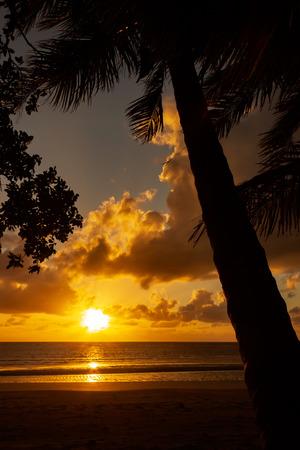 Wschód słońca na Przylądku Tributation w regionie Daintree na dalekiej północy Queensland. Cape Tribulation to odległy cypel i cel ekoturystyki w północno-wschodnim Queensland.