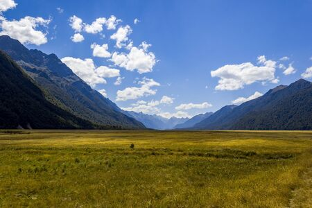 Beautiful meadow field landscape in Eglinton Valley on Te Anau-Milford Highway road, Fiordland National Park, South Island, New Zealand Stok Fotoğraf