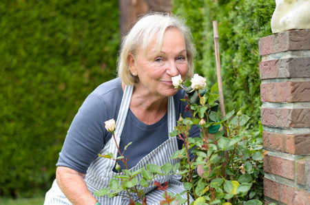 Middle Aged Woman Kissing WhiteHaired ago Rose Plant at the Garden While Looking at the Camera. Banco de Imagens