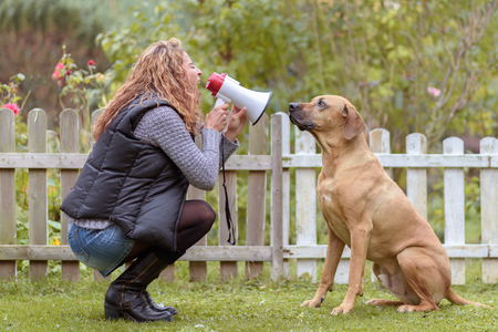 squatting down: Attractive trendy young woman talking to her dog using a megaphone squatting down facing it in the garden against a rustic wooden fence