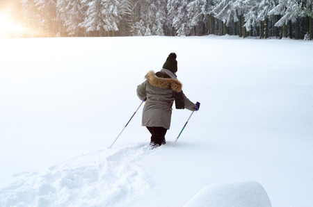 Person going Nordic or cross country walking or skiing in deep fresh pristine white winter snow crossing a field towards a pine forest, rear view Stock Photo