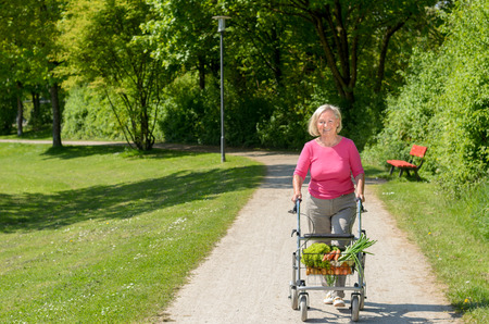 oldage: Elderly handicapped woman using a walker for mobility to do her grocery shopping as she walks back alone along a rural path Stock Photo