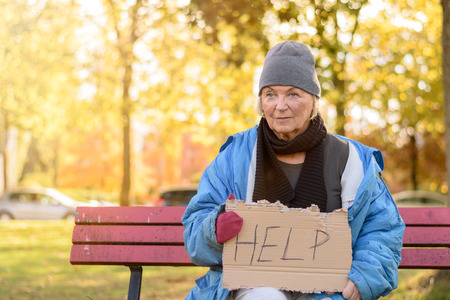 Homeless or poverty stricken elderly lady sitting on a park bench in the cold autumn weather holding a cardboard sign asking for Help