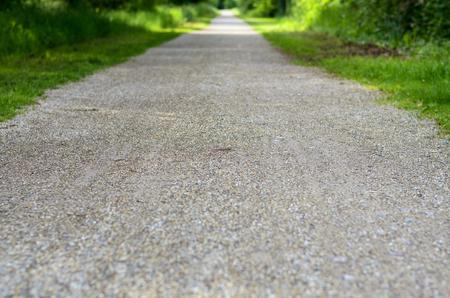 Lege landelijke weg door blad groen de lentebos die in een rechte lijn vanaf de camera achteruitgaan