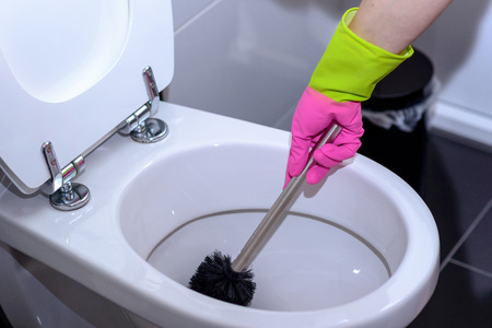 Woman in pink gloves cleaning out the toilet bowl with a brush to remove germs and bacteria under the rim in a concept of cleanliness, hygiene and household chores
