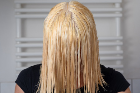 Blond woman with shoulder length wet hair leaning forward after washing it with shampoo in a bathroom in a close up view on her hair