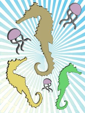 oceanography: Illustrazione vettoriale seahorse astratta Medusa oceano