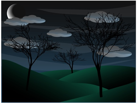 misty forest: Scary oscura ca�da solitaria como paisaje de �rboles sin hojas y cielos hostiles