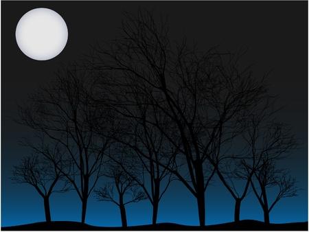 큰 달에 의해 불이 밤에 사람이없는 나무의 여러 소 름 남작 숲 일러스트